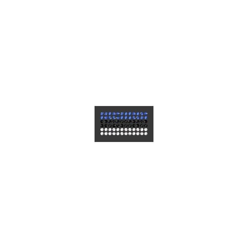Eesti Lipp 280/206/001/SS10 40x20MM