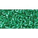 TR-11-24B SILVER-LINED DARK PERIDOT SEED BEADS