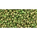 TR-11-1702 GILDED MARBLE GREEN TOHO SEED BEADS