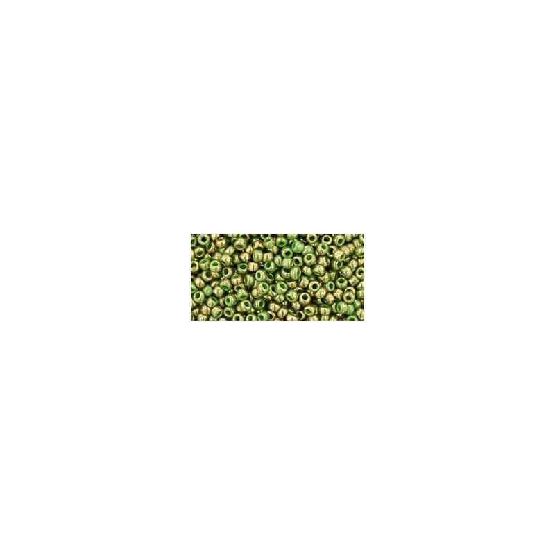 TR-11-1702 GILDED MARBLE GREEN TOHO БИСЕР