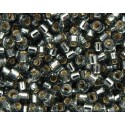 DBM-48 Silver Lined Grey Miyuki DELICA 10/0 seed beads